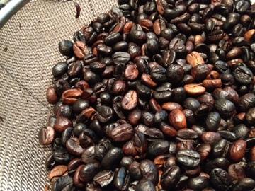 Coffee beans6.JPG